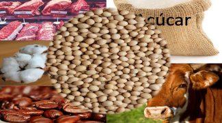 Agro_produtos-agricolas-_carnes_café_açucar_-comex__